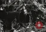 Image of Japanese soldiers Corregidor Island Philippines, 1942, second 15 stock footage video 65675062379