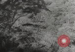Image of Japanese soldiers Corregidor Island Philippines, 1942, second 27 stock footage video 65675062379