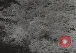Image of Japanese soldiers Corregidor Island Philippines, 1942, second 28 stock footage video 65675062379