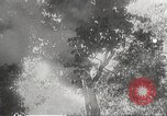 Image of Japanese soldiers Philippines, 1942, second 25 stock footage video 65675062382