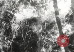 Image of Japanese soldiers Philippines, 1942, second 42 stock footage video 65675062382