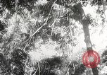 Image of Japanese soldiers Philippines, 1942, second 44 stock footage video 65675062382