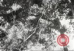 Image of Japanese soldiers Philippines, 1942, second 46 stock footage video 65675062382