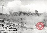 Image of Japanese soldiers Philippines, 1942, second 17 stock footage video 65675062385