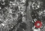 Image of Japanese soldiers Philippines, 1942, second 23 stock footage video 65675062385