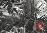 Image of Japanese soldiers Philippines, 1942, second 26 stock footage video 65675062385