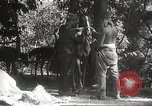 Image of Japanese soldiers Philippines, 1942, second 42 stock footage video 65675062385