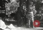 Image of Japanese soldiers Philippines, 1942, second 43 stock footage video 65675062385