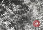 Image of Japanese officials Philippines, 1942, second 24 stock footage video 65675062386