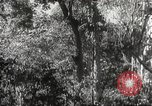 Image of Japanese officials Philippines, 1942, second 28 stock footage video 65675062386