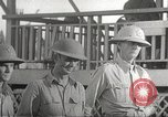 Image of American surrender Philippines, 1942, second 33 stock footage video 65675062391
