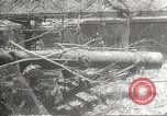 Image of war damage Philippines, 1942, second 18 stock footage video 65675062394