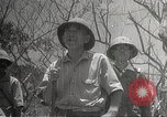 Image of war damage Philippines, 1942, second 32 stock footage video 65675062394