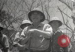 Image of war damage Philippines, 1942, second 33 stock footage video 65675062394