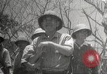 Image of war damage Philippines, 1942, second 34 stock footage video 65675062394