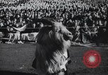 Image of Army Navy football game United States USA, 1949, second 15 stock footage video 65675062408