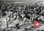 Image of Negro soldiers world war 2 United States USA, 1945, second 51 stock footage video 65675062417