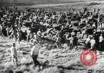 Image of Negro soldiers world war 2 United States USA, 1945, second 52 stock footage video 65675062417