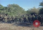Image of 101st Airborne Division Vietnam, 1965, second 5 stock footage video 65675062448