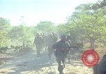 Image of 101st Airborne Division Vietnam, 1965, second 16 stock footage video 65675062448