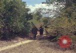 Image of 101st Airborne Division Vietnam, 1965, second 54 stock footage video 65675062449