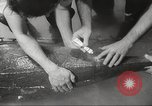 Image of dugong San Francisco California USA, 1955, second 20 stock footage video 65675062511