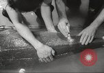 Image of dugong San Francisco California USA, 1955, second 22 stock footage video 65675062511