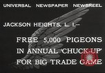 Image of released pigeons Jackson Heights Long Island New York USA, 1932, second 7 stock footage video 65675062521