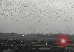 Image of released pigeons Jackson Heights Long Island New York USA, 1932, second 24 stock footage video 65675062521