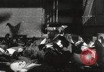 Image of released pigeons Jackson Heights Long Island New York USA, 1932, second 44 stock footage video 65675062521