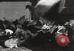 Image of released pigeons Jackson Heights Long Island New York USA, 1932, second 45 stock footage video 65675062521