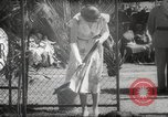 Image of Queen Elizabeth II Jamaica, 1953, second 38 stock footage video 65675062537