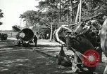 Image of A-4 missile Peenemunde Germany, 1943, second 49 stock footage video 65675062553