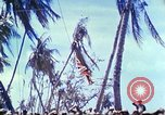 Image of Battle of Tarawa Pacific Ocean, 1943, second 59 stock footage video 65675062561