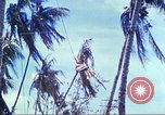 Image of Battle of Tarawa Pacific Ocean, 1943, second 60 stock footage video 65675062561
