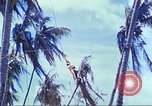 Image of Battle of Tarawa Pacific Ocean, 1943, second 61 stock footage video 65675062561