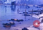 Image of Battle of Tarawa Pacific Ocean, 1943, second 48 stock footage video 65675062563