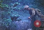 Image of United States Marines Saipan Northern Mariana Islands, 1944, second 46 stock footage video 65675062571
