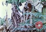 Image of United States Marines Saipan Northern Mariana Islands, 1944, second 21 stock footage video 65675062591