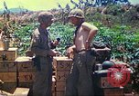 Image of United States Marines Mariana Islands, 1944, second 59 stock footage video 65675062595