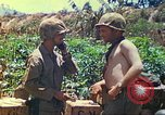 Image of United States Marines Mariana Islands, 1944, second 62 stock footage video 65675062595