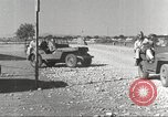 Image of Pilots of 332nd Fighter Group head out on a mission Termoli Italy, 1944, second 27 stock footage video 65675062599