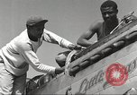Image of Ground crewmwn servicing P-51s of the 332nd Fighter Group Termoli Italy, 1944, second 15 stock footage video 65675062602
