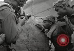Image of Negro 99th Pursuit Squadron of 332nd Fighter Group Orsogna Italy, 1943, second 38 stock footage video 65675062604