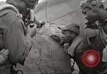 Image of Negro 99th Pursuit Squadron of 332nd Fighter Group Orsogna Italy, 1943, second 40 stock footage video 65675062604