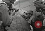 Image of Negro 99th Pursuit Squadron of 332nd Fighter Group Orsogna Italy, 1943, second 44 stock footage video 65675062604