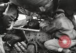 Image of 99th Pursuit Squadron Tuskegee Airmen Orsogna Italy, 1943, second 59 stock footage video 65675062605