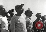 Image of 100th Squadron of P-51s from 332nd Fighter Group Termoli Italy, 1944, second 2 stock footage video 65675062610