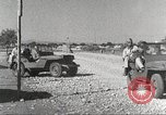 Image of 332nd Fighter Group pilots take off on a mission Termoli Italy, 1944, second 27 stock footage video 65675062612