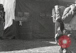 Image of 332nd Fighter Group pilots take off on a mission Termoli Italy, 1944, second 42 stock footage video 65675062612